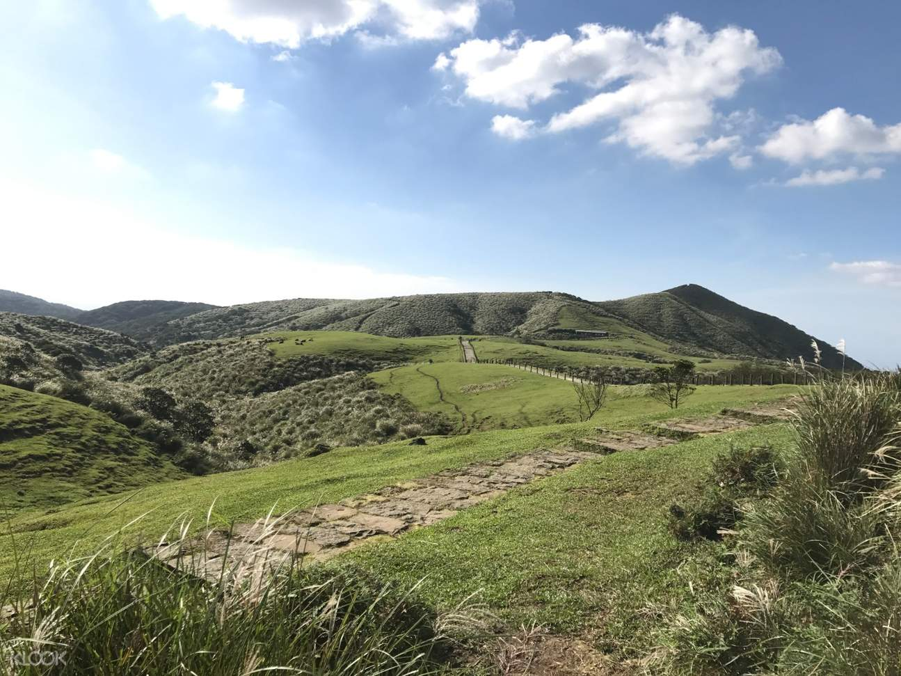 陽明山国家公園の景観。