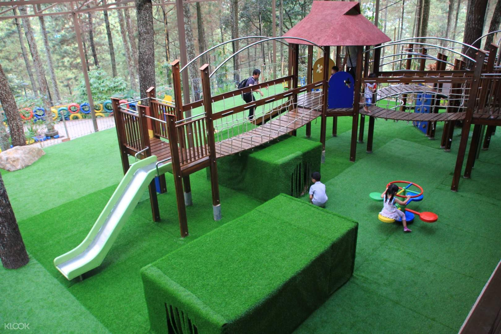 Pine House Dago Dream Park