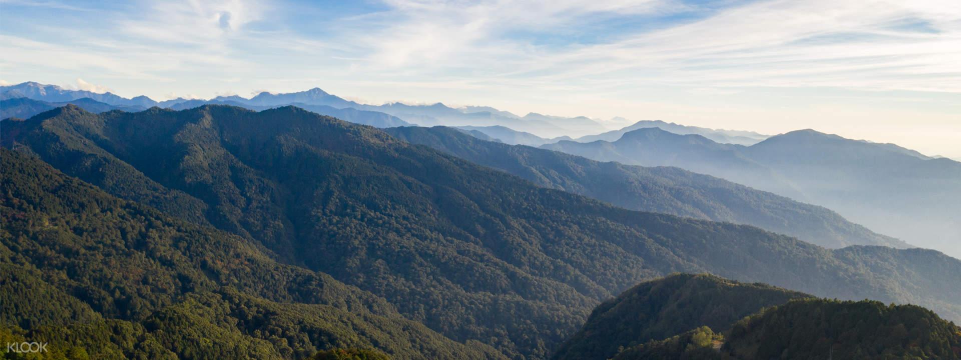 Discover Alishan Mountain - Klook