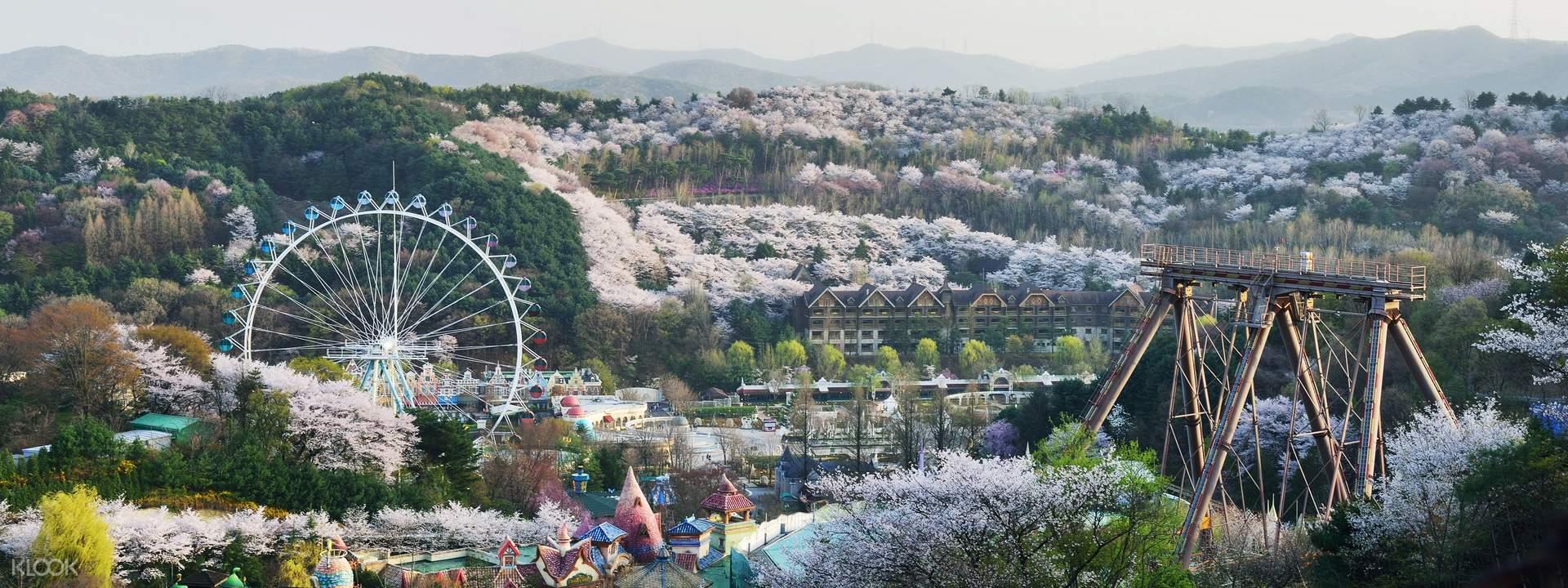 Everland Korea Theme Park - Seoul   Klook Travel