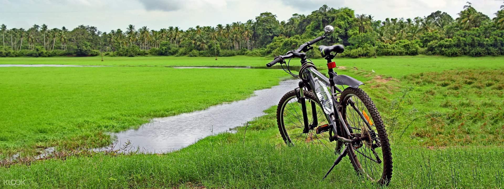 Goa Divar and Chorao Islands Cycling Tour - Klook