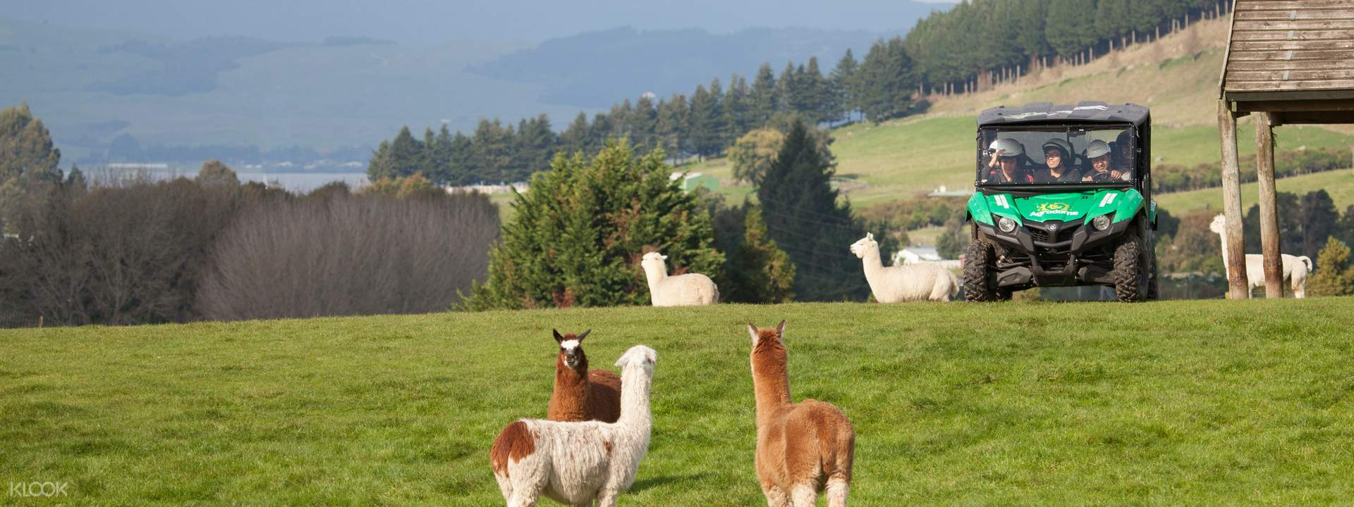 Honey Farm South Island New Zealand