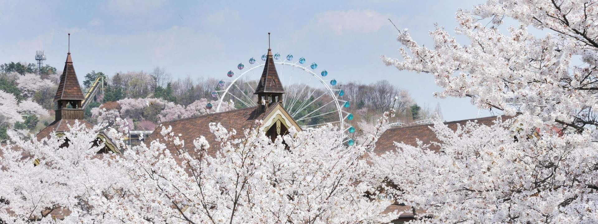 Klook Tailored Bus to Everland from Seoul (Day Trip) - Klook