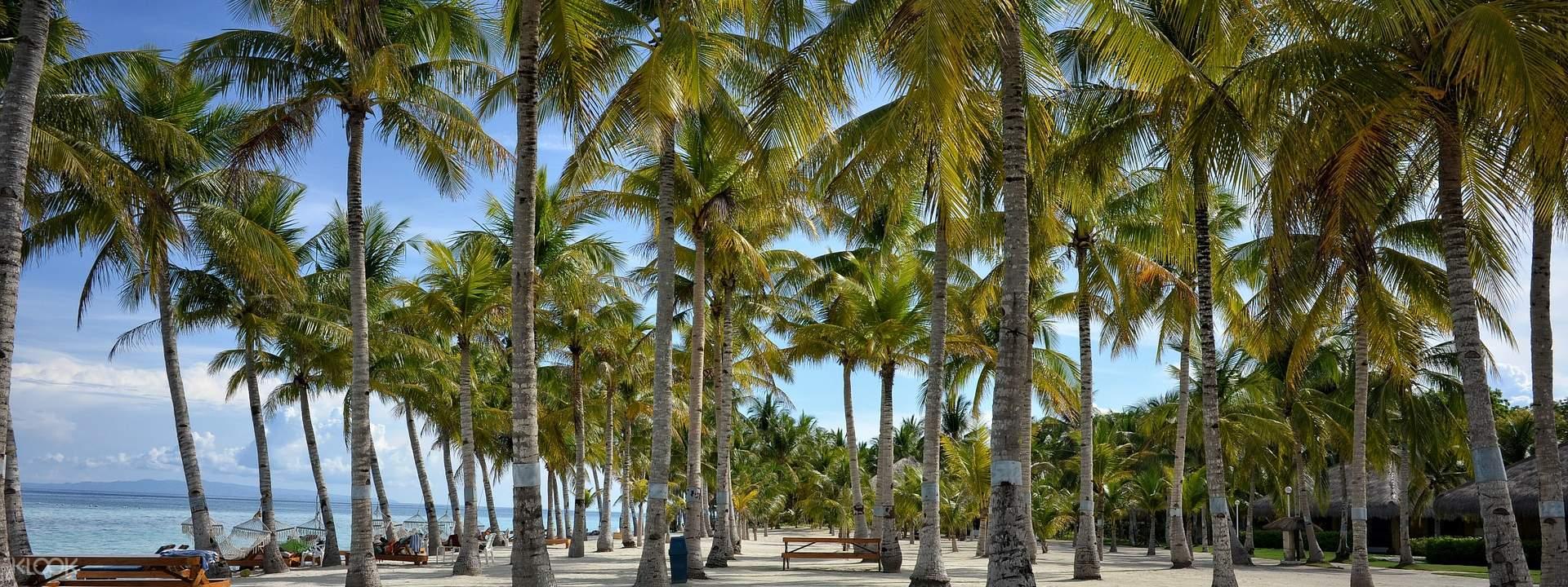 """Panglao Island Land Tour"""""""