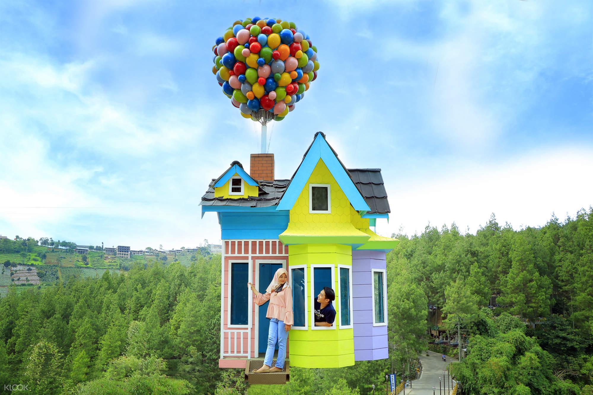 Up House Dago Dream Park