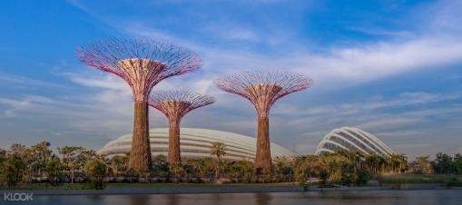 Full Day Southern Islands Cruise and Gardens by the Bay