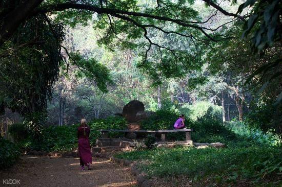 浦那奧修花園(Osho Garden)靜心之旅