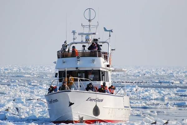 drift ice and bird watching cruise shiretoko