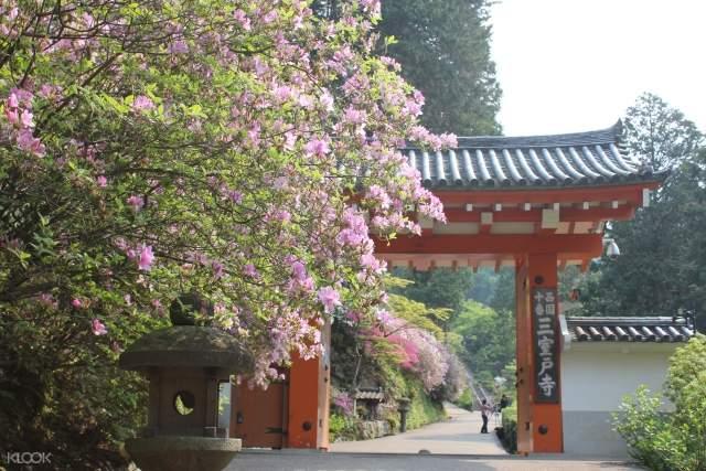 京都寺廟一日遊,京都寺廟,京都平等院
