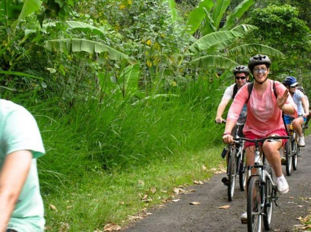 Kintamani to Ubud Bike Tour