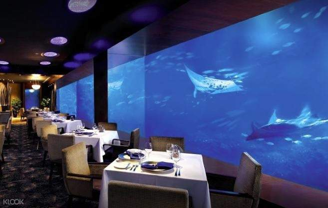 Air & Sea Immersive Dining Experience