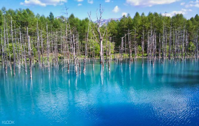 blue pond in hokkaido