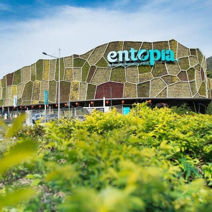 entopia butterfly farm discount tickets