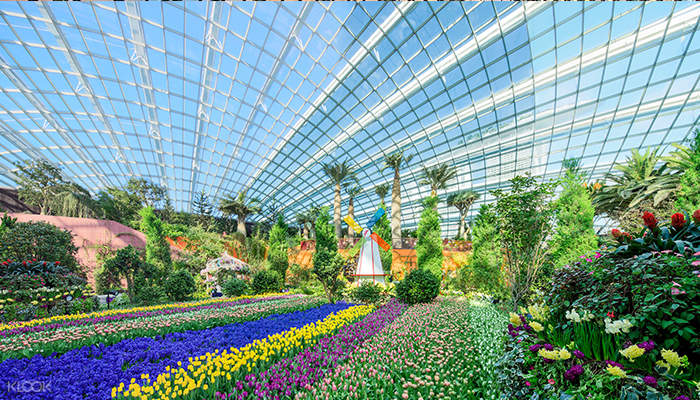 Visit Gardens by the Bay with the SG55 City Pass