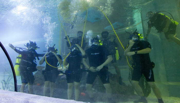 長灘島潛水,長灘島水族館潛水,長灘島水族館,長灘島水上運動