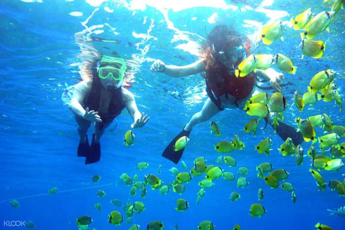 马来西亚浮潜