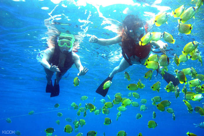 palau payar snorkeling