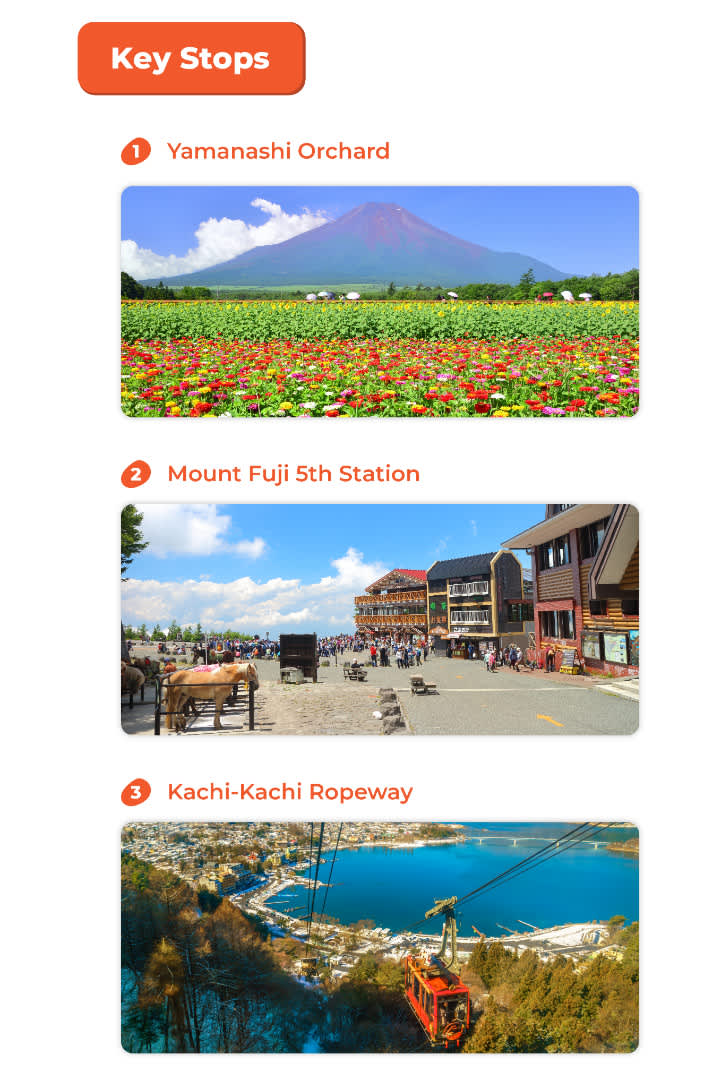 key stops for the Mt.Fuji sightseeing tour from tokyo