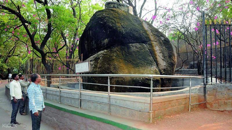 印度 海得拉巴 尼赫魯動物園 & 野生徒步體驗