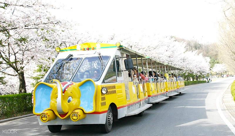 首尔动物园门票