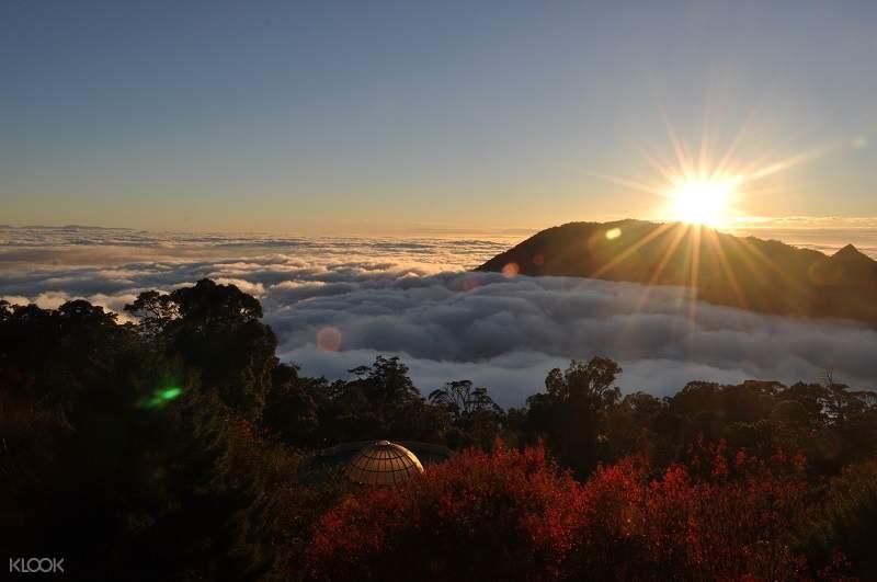 Enjoy sea of clouds at dusk