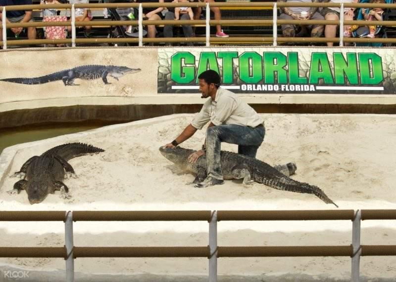 Gatorland Admission Tickets in Orlando