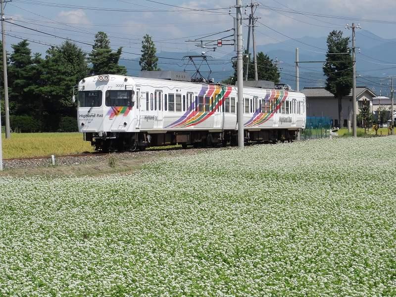 上高地線觀光列車,松本交通,新島島交通