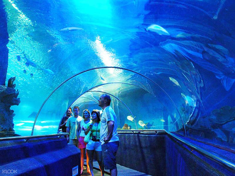 Tri Nguyen Aquarium inside