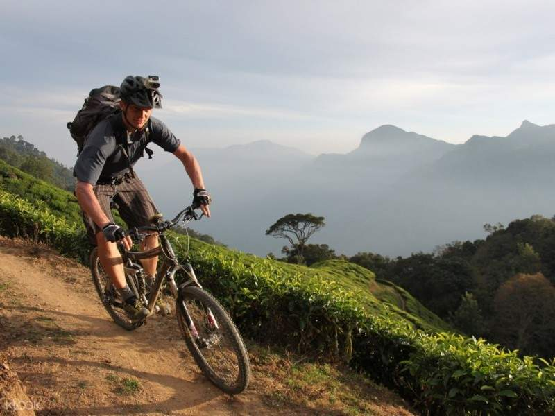 munnar cycling tour