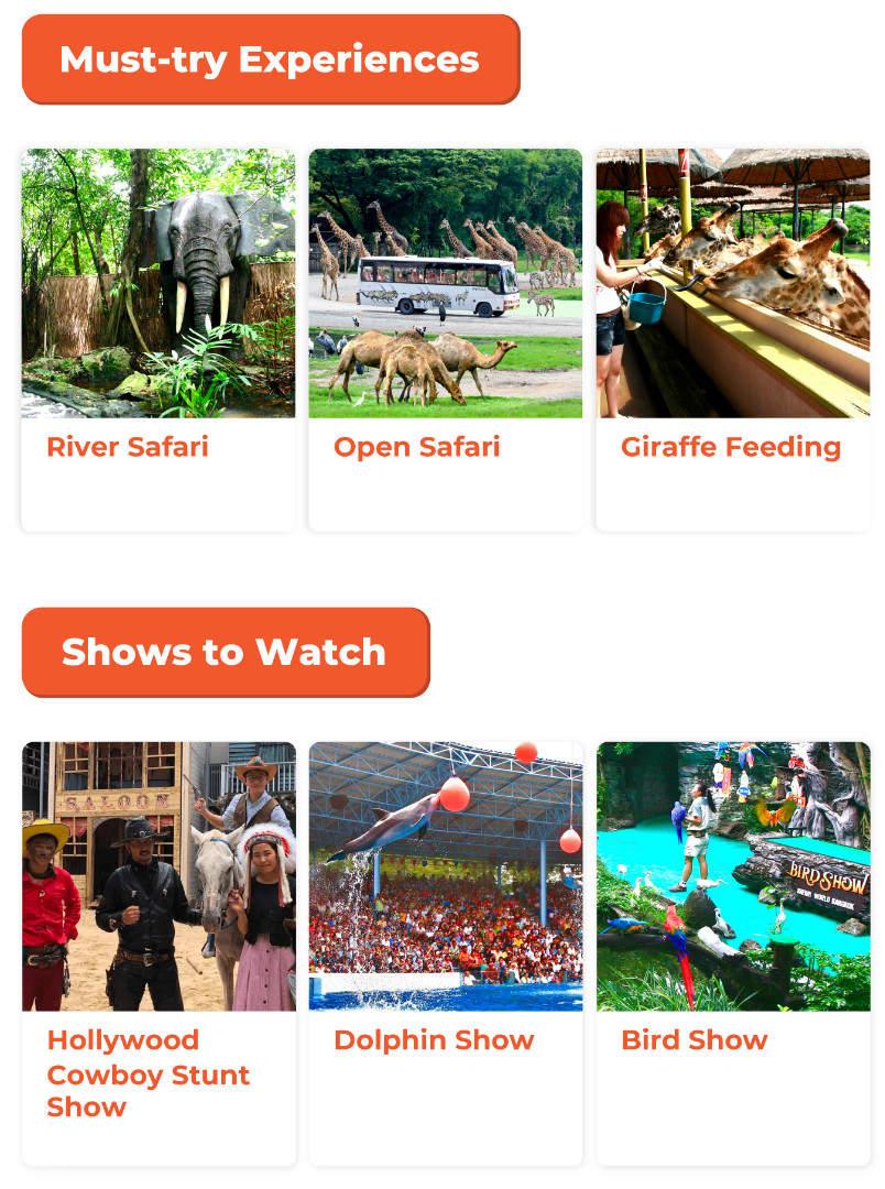 attractions at Safari World
