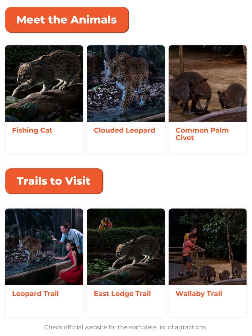 singapore night safari animals and trails