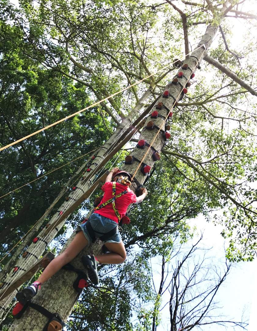 Sai Yuen Adventure - Climbing Monkeys