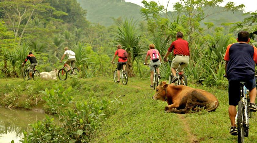 可倫坡日間鄉村騎行之旅