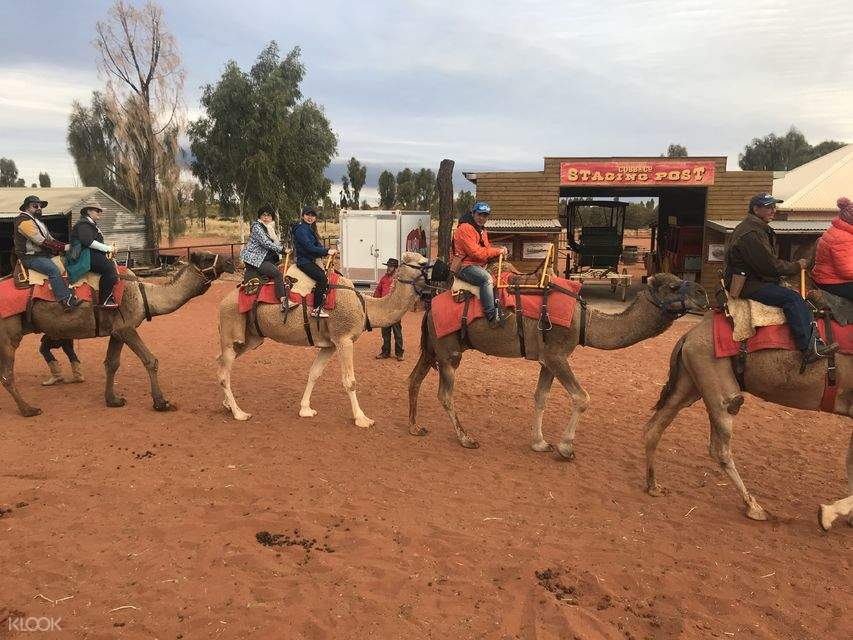 tourists riding camels at Uluru and Kata Tjuta