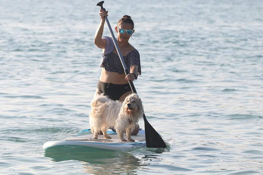 person SUP with dog