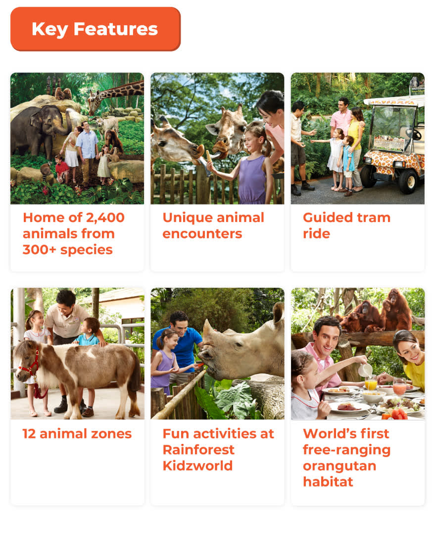 Key Features of Singapore Zoo