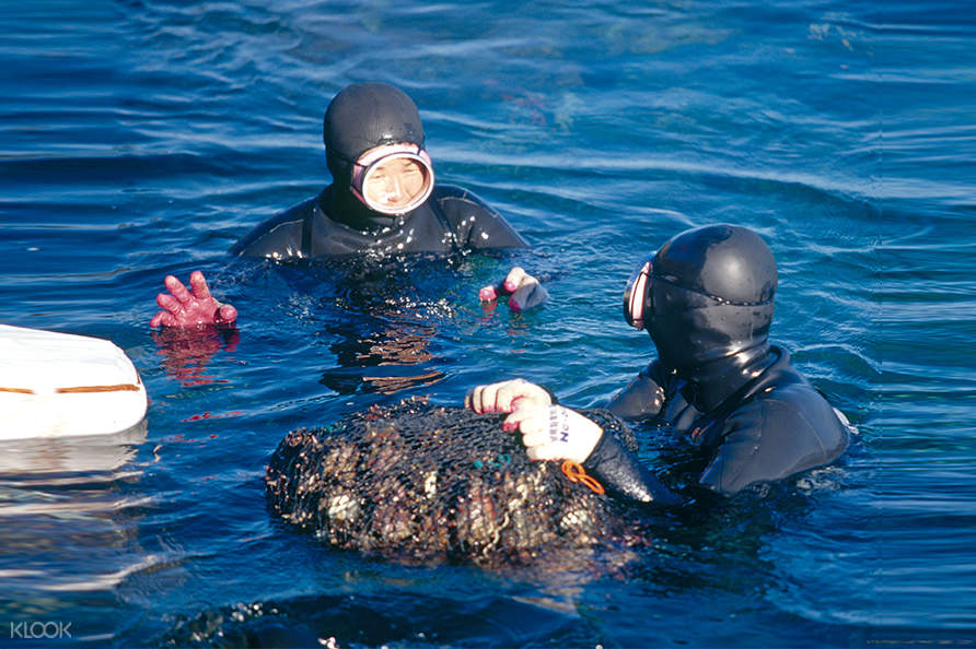 snorkeling on jeju island