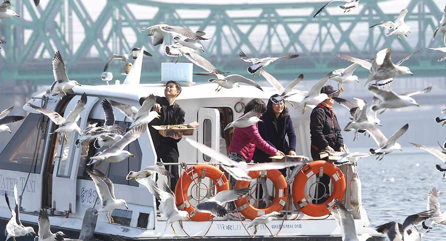 汉江水上计程车体验