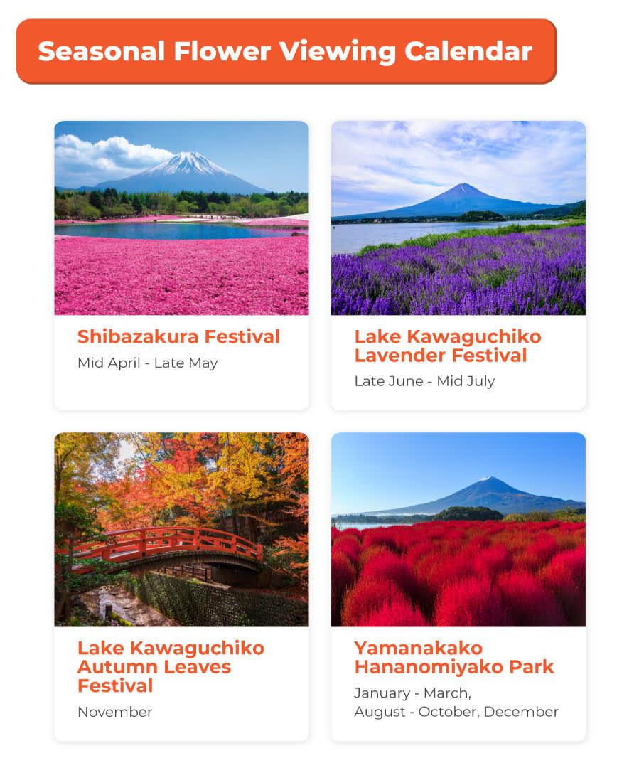 flower festivals at mt. fuji