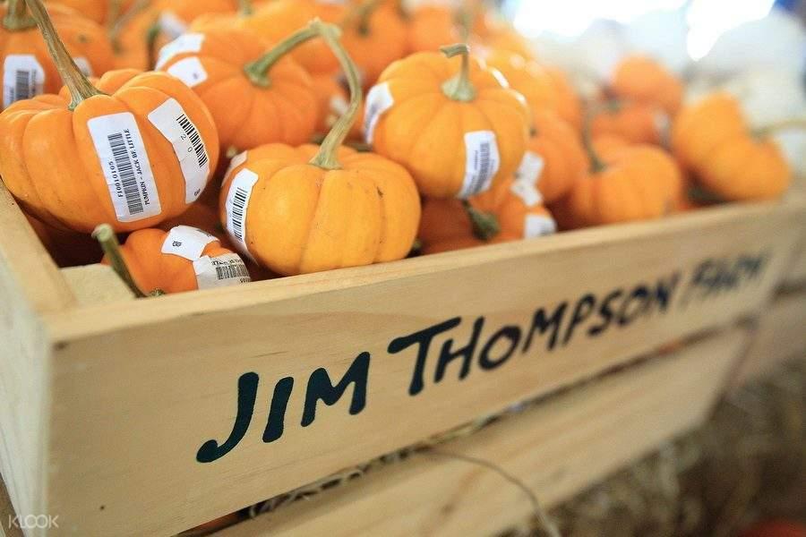泰國農場,吉姆·湯姆森農場,曼谷農場,曼谷一日遊,曼谷特色遊,泰國特色遊