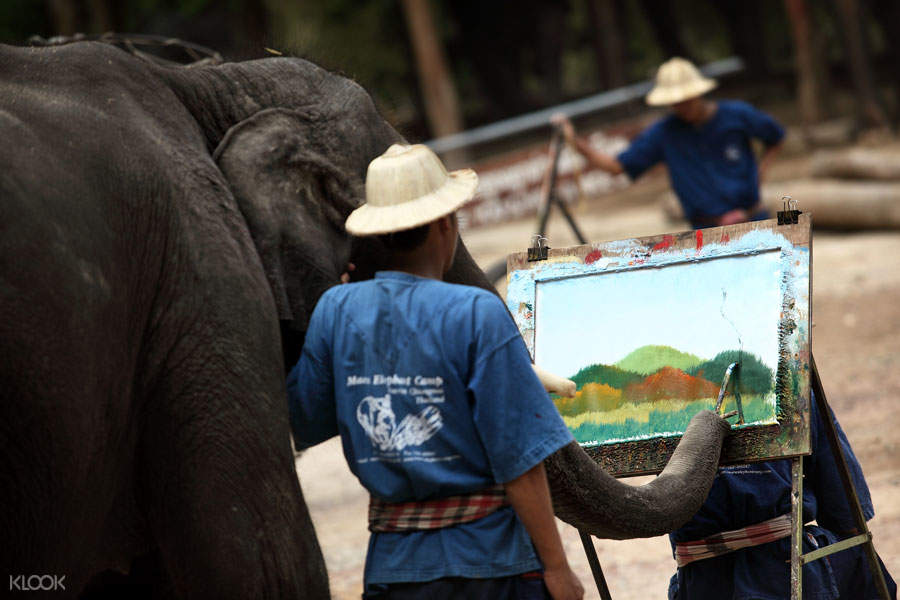 elephants painting with mahout
