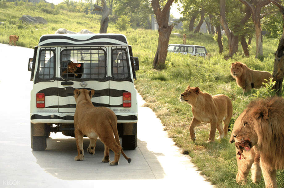 Qinling Wildlife Park