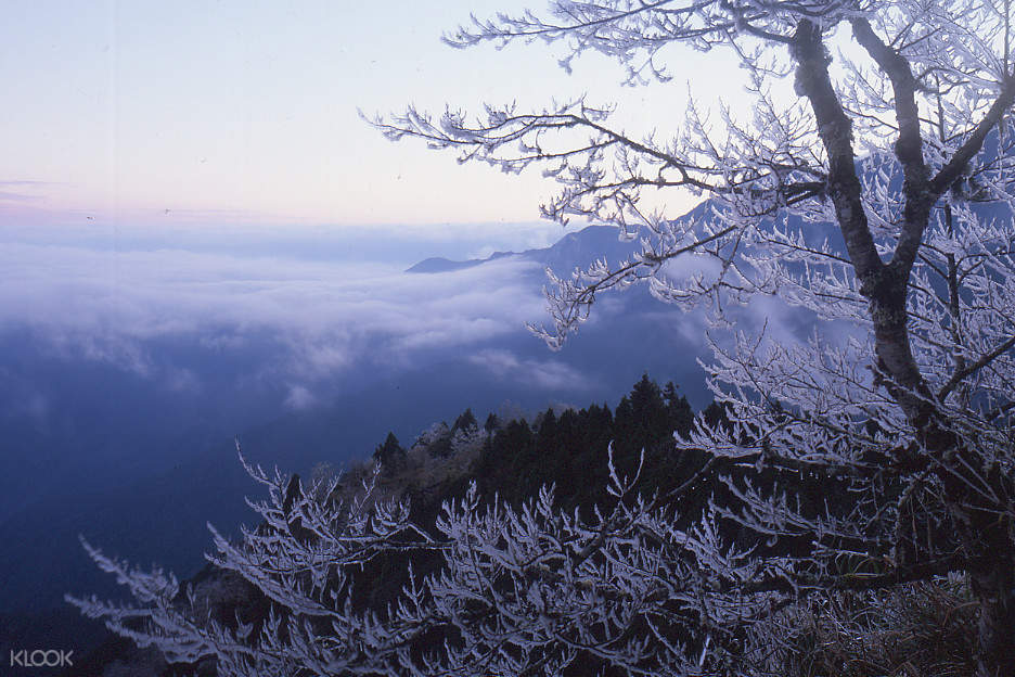winter at Taipingshan National Forest Recreation Area