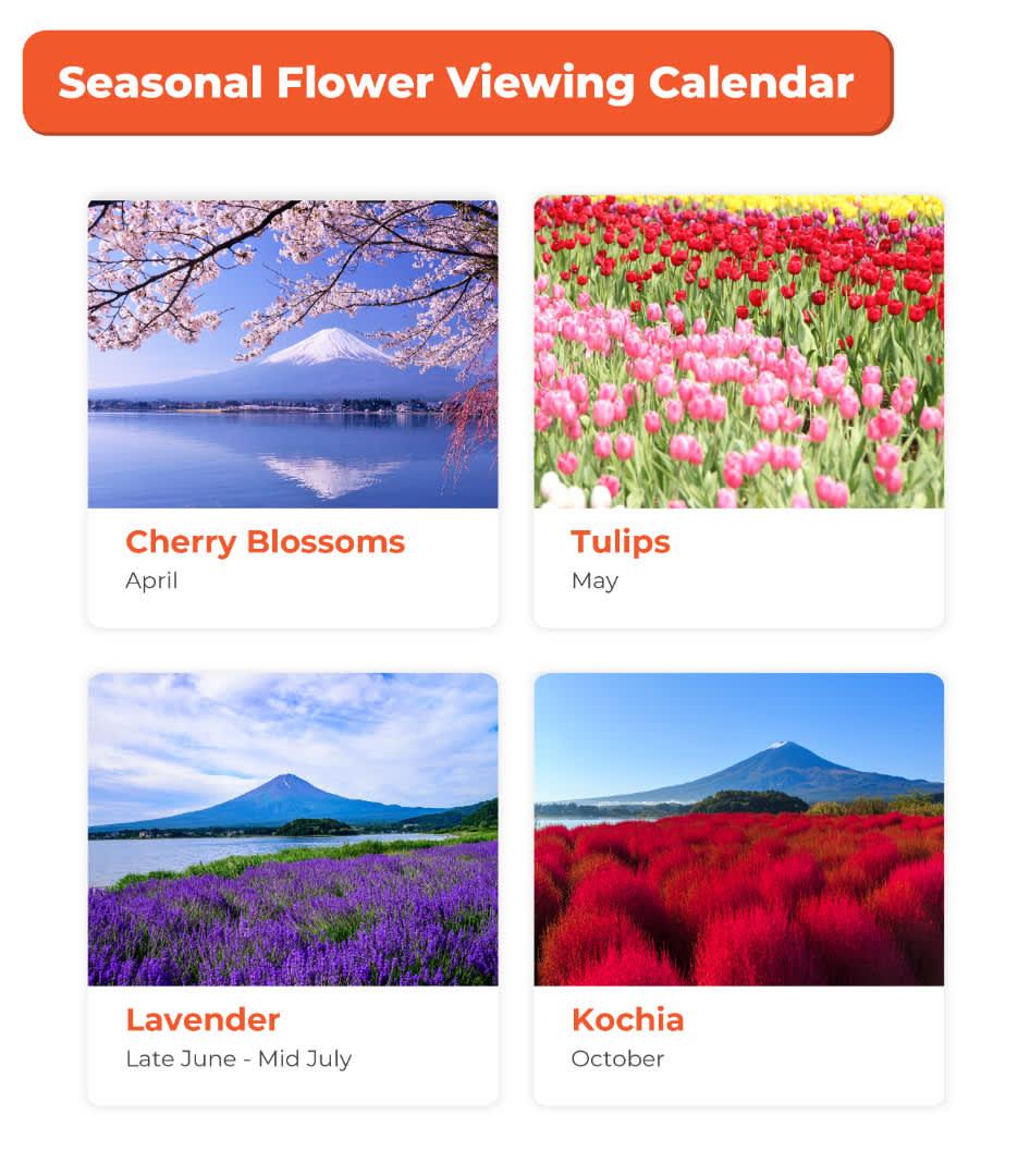 seasonal fruits viewing calendar
