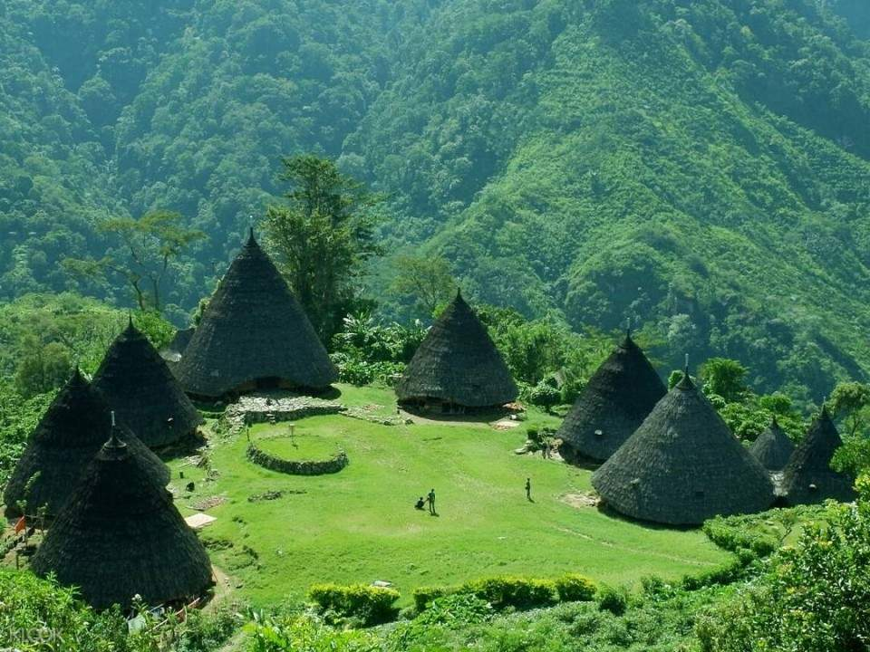 traditional cone shape huts in wae rebo