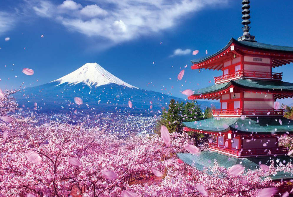 cherry blossoms blowing in the wind with a pagod and mt fuji in background