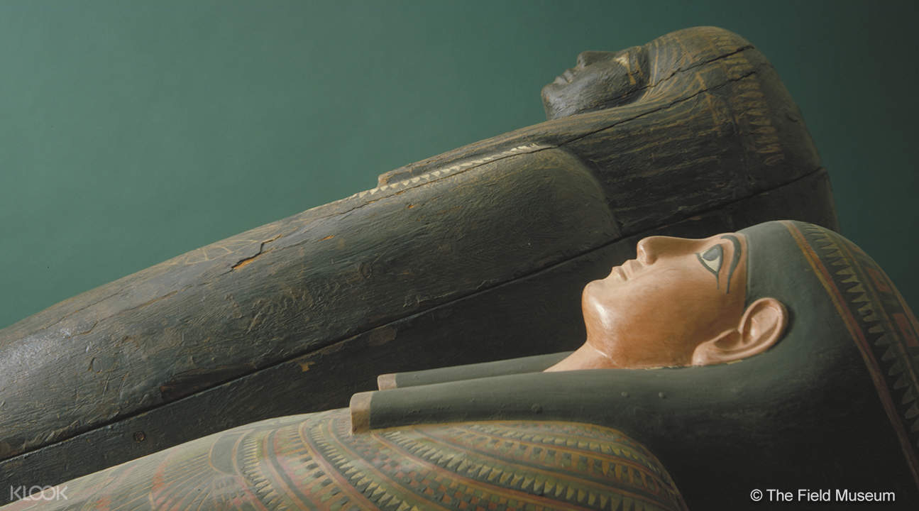 an Egyptian coffin in the Field Museum of Natural History