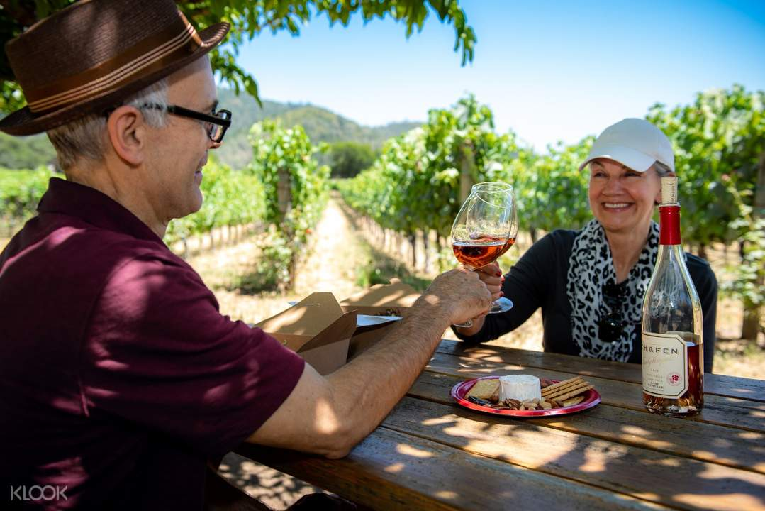 people sharing wine somewhere in Sonoma County