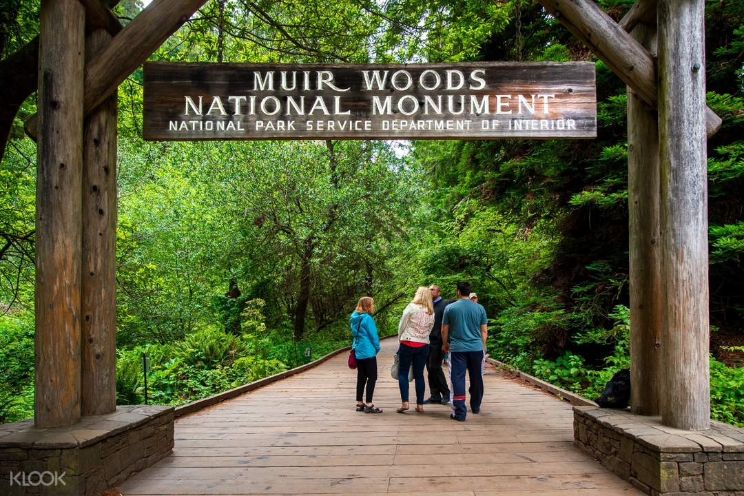 the Muir Woods National Monument