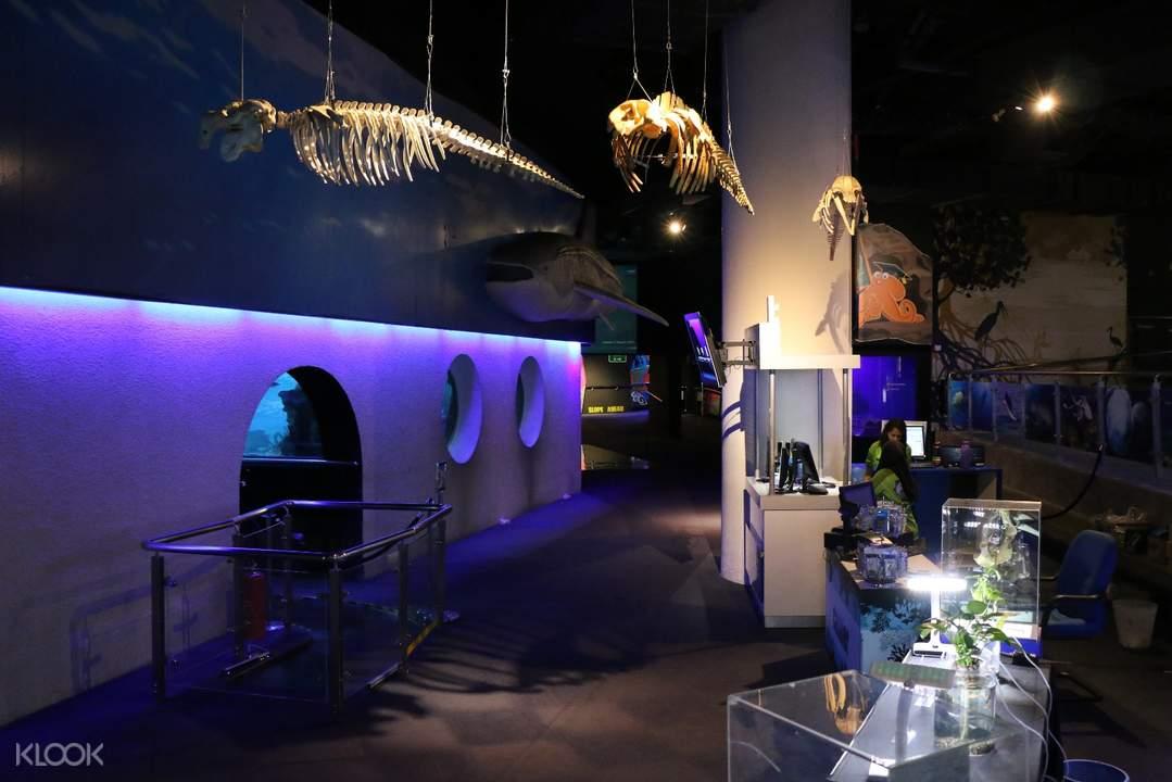 aquaria klcc display